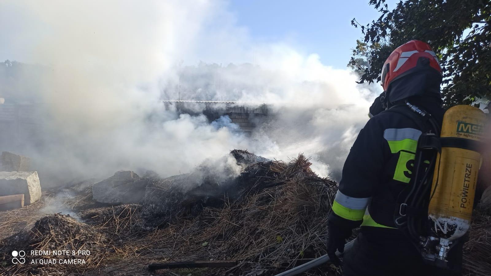 Pracowity czwartek dla strażaków z OSP Strzegom [FOTO]