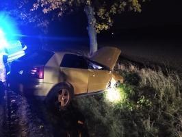 Audi uderzyło w drzewo! [FOTO]