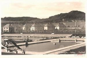 Góra Krzyżowa 1890 – 1940 [FOTO]