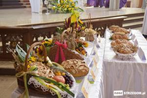 Święto Plonów w Strzegomiu [FOTO]